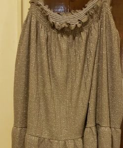 NWT Anthropologie Silver Brand New Tunic. XL